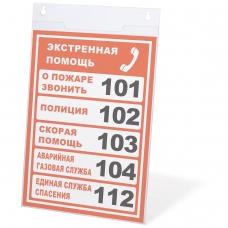 Подставка настенная для рекламных материалов ВЕРТИКАЛАЛЬНАЯ 210х297 мм, А4, оргстекло, BRAUBERG, 290428